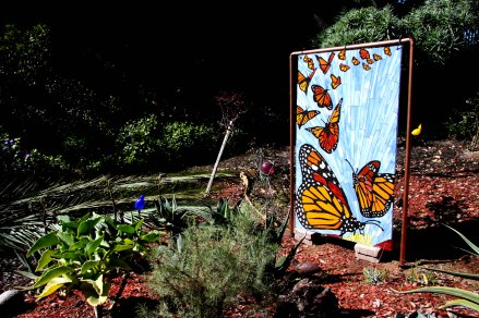 BUTTERFLIES, 2011, CARDIFF, CA